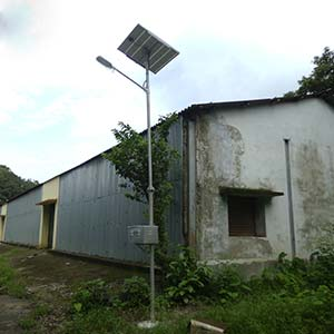 20 Nos. CFL based Solar Street Lights